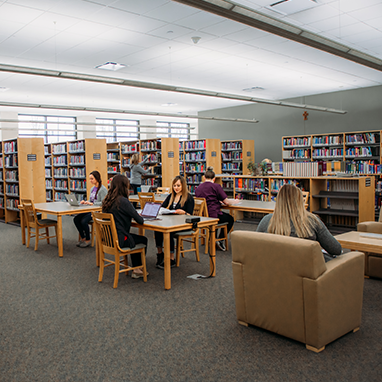 Students studying in Mercy College library